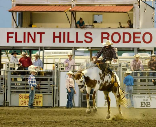 Flint Hills Rodeo showing cowboy on bucking horse