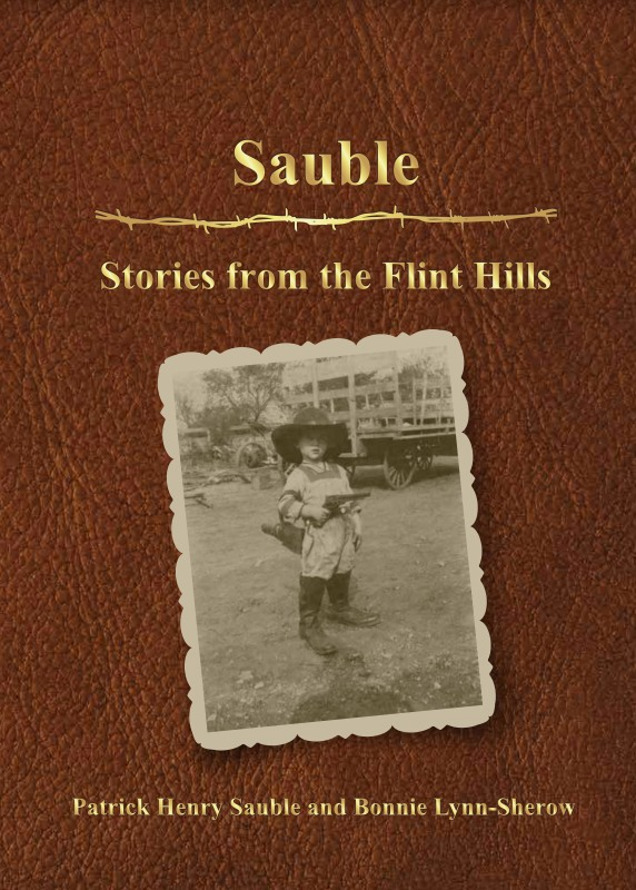 Pat Sauble book cover