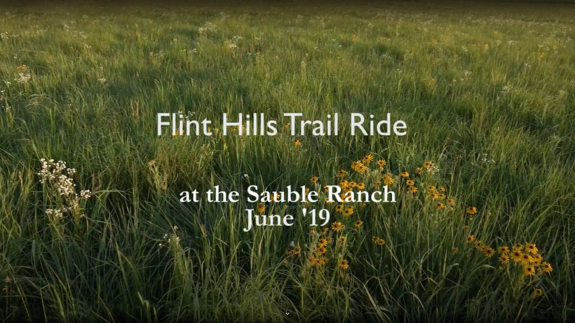 Text: Flint Hills Trail Ride on background of wildflowers and grass in the Flint Hills